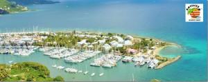 Nanny Cay Aerial